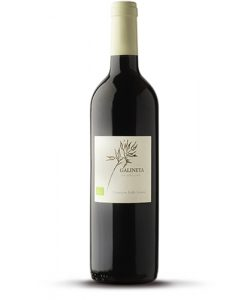 Bouteille de vin rouge Bio sans sulfites