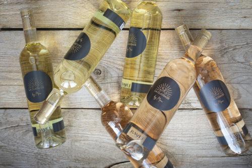 les vins blanc et rosé conversion bio cépages résistants de la Clausade